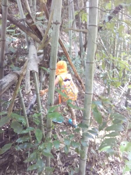 竹の子大好きな長男は竹やぶに寄り道。