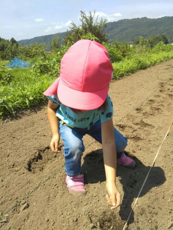 珍しく娘が食いつき、種まきを楽しんでいました。