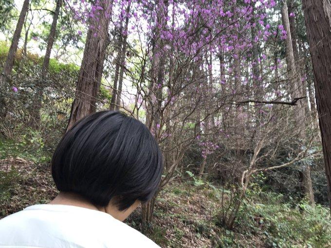 家にいると食べ物の催促ばかり。プチドライブは人混みを避け「桜が終わった桜の名所」に行ってみました。野生種だというツツジの花がとてもキレイでした。