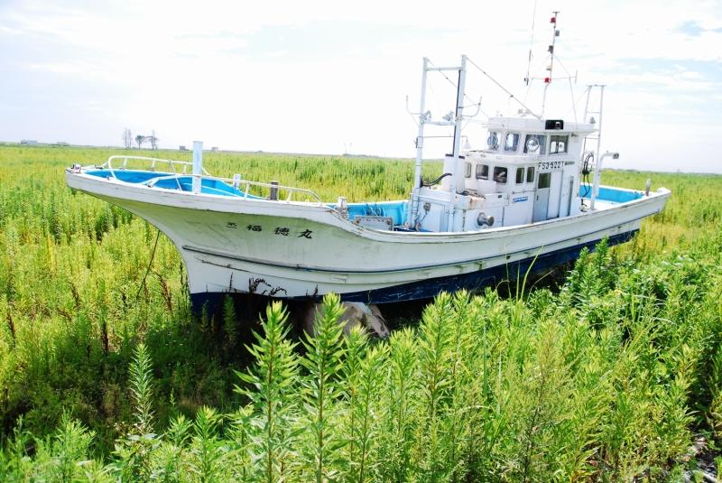 雑草に埋もれた漁船。海までの距離はおよそ1km。