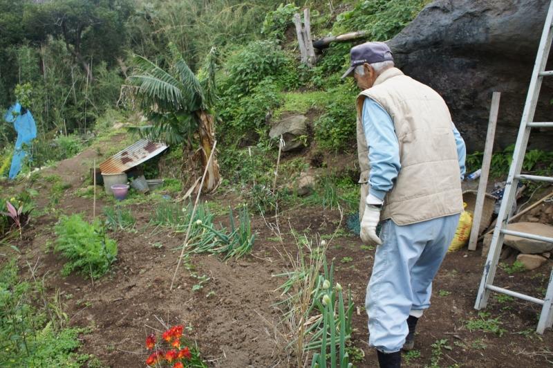 公園を案内してくれる畠さん。荒れた竹林を刈り、3年がかりで作ったという。