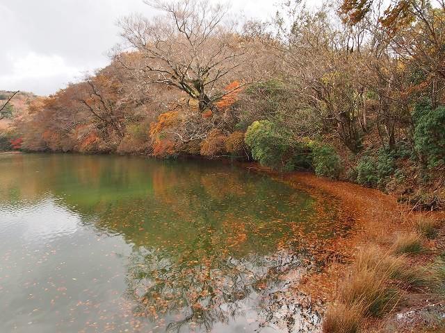 八丁池。池の周りの木々の多くは落葉していました