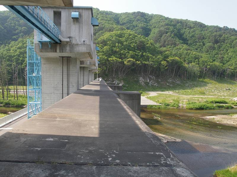 防潮水門の上で撮影。右側が海側。左側が防潮堤の内側。川や山際の木の生え方に違いがある