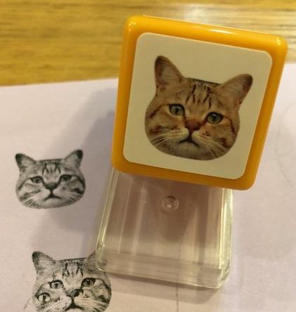 リアルな猫スタンプ