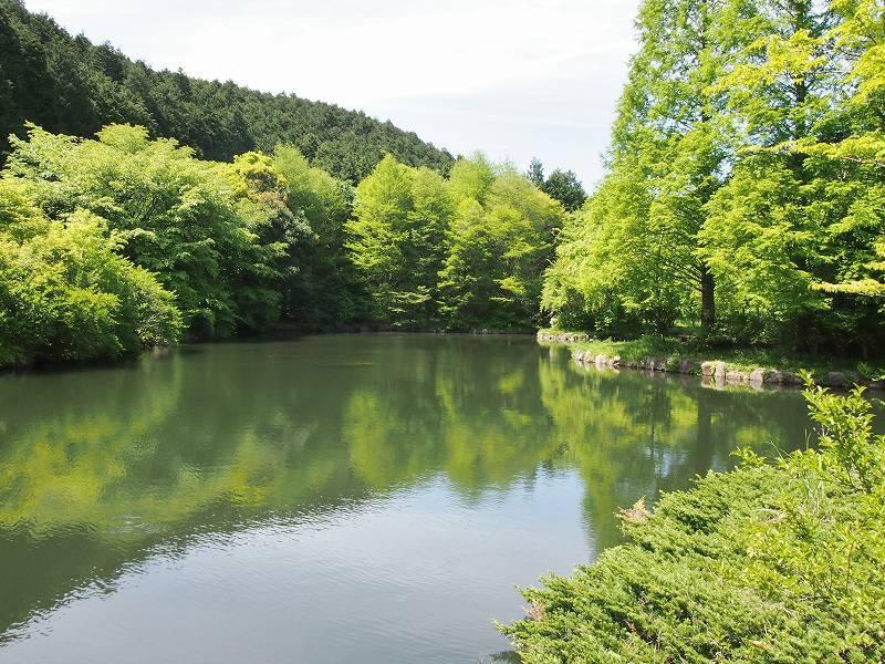 函南町原生の森公園