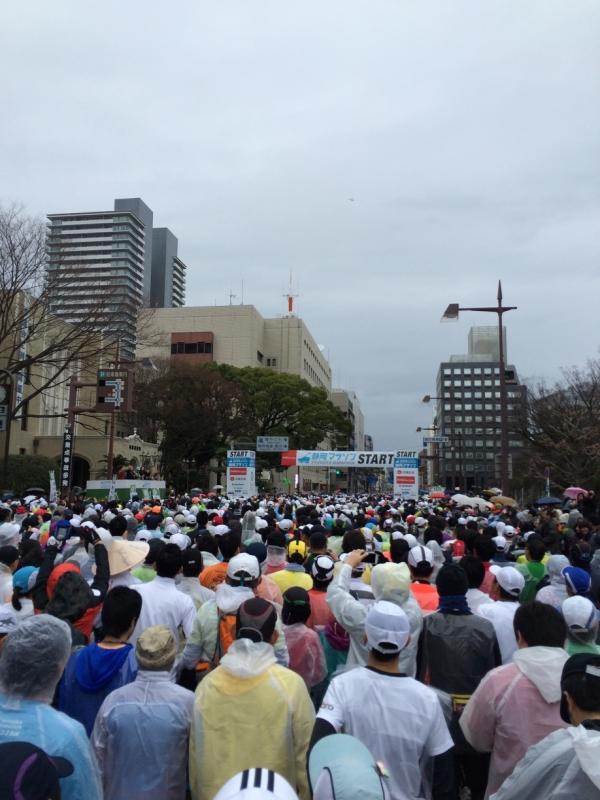 静岡マラソン2015 スタート地点