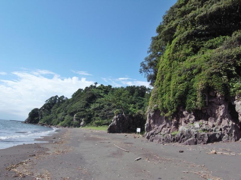 写真は伊豆半島ジオパークの公式サイトより(当日は天気がイマイチだったので)