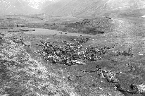 wikipediaより「日本軍は雀ヶ丘(Engineer Hill)で全滅した」
