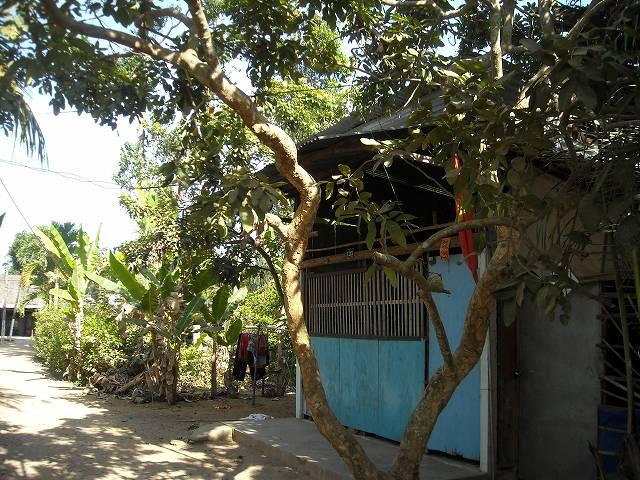 島を貫く小道の両脇には所々に民家が建っている