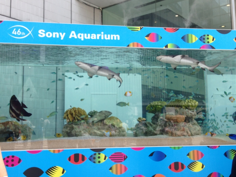 アクアリウムのビル前にある水槽!中は熱帯魚からサメまでいろいろ!