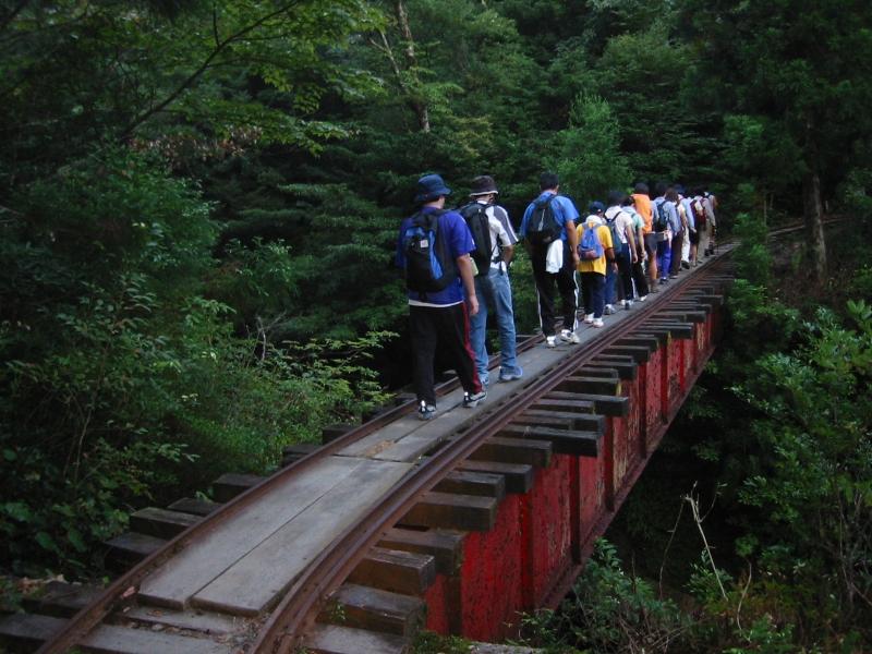登山口からしばらくの間は、かつて伐採した屋久杉を運び出すために利用していたトロッコの線路を歩いて進みます。ガイド料がなかった我々は、ガイドさんが先導しているグループのうしろをひそかにくっついていきました。