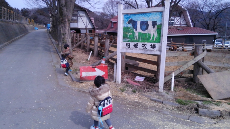 今年の初め、服部牧場へ遊びに行きました。
