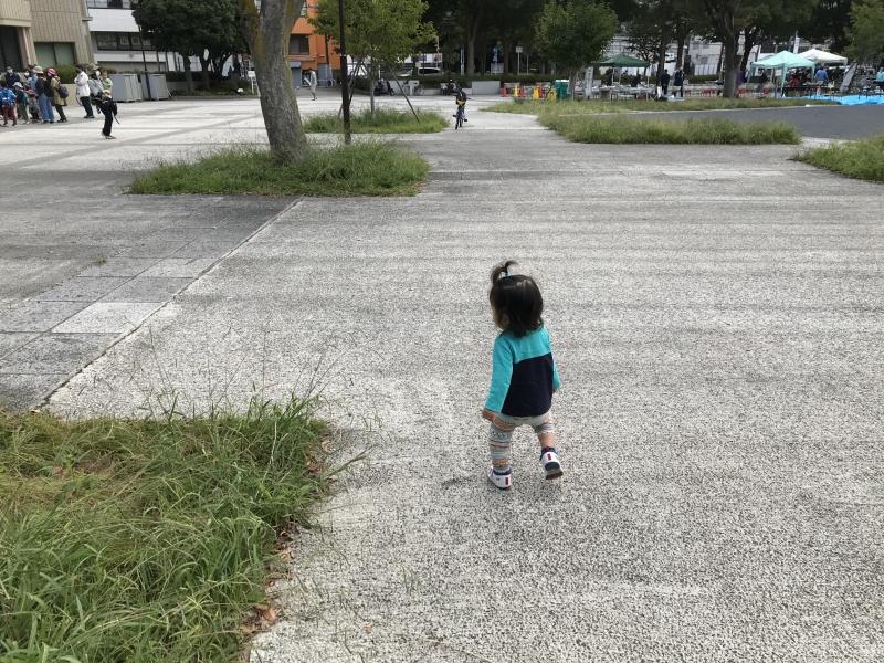 草むらに沿って直角カーブを曲がる練習をしているのかも