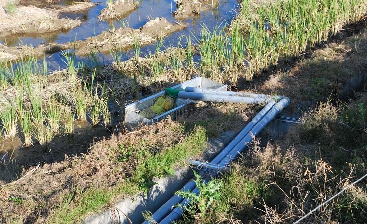 """ゼオライトを詰めた袋を入れたバスケットから取水できるよう、田んぼの用水を改造している。これもどうすれば線量を下げることができるかの"""" 実験 """"の一環だ"""