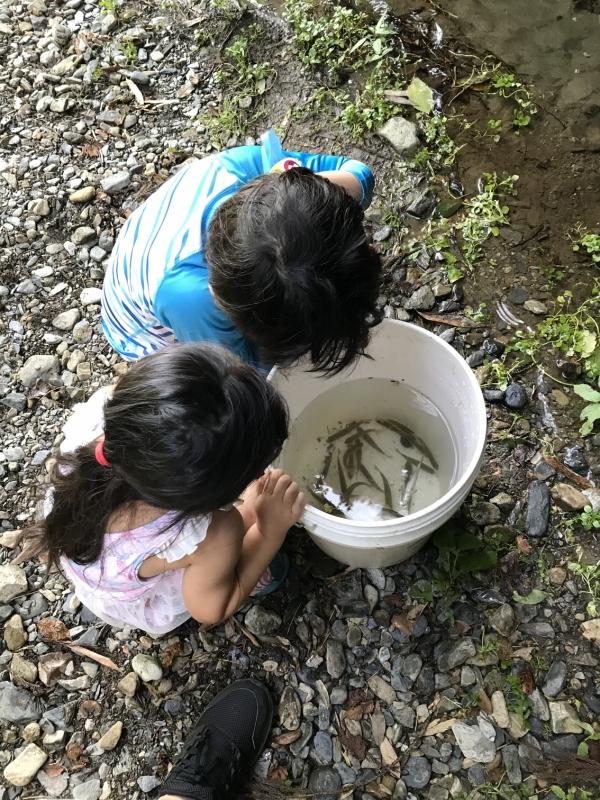 たくさん釣れました!がちょっと問題が。子供達が全く魚にさわれないのです・・・。そのため、魚がかかったら毎回魚から針を外す作業をしに彼のもとへ駆けつけなければいけませんでした・・・。よくよく考えたら全然ゆっくりしていないような気がしてきた。