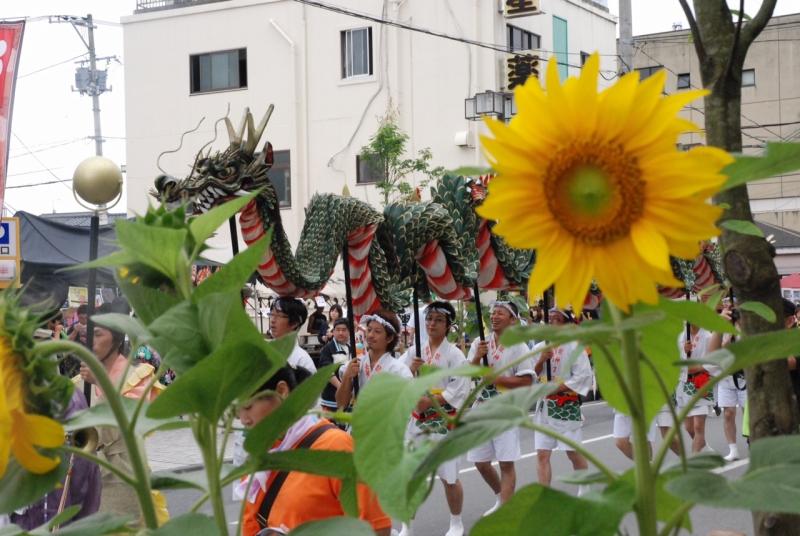 2013年の石巻・川開き祭り。金華山龍踊りのパレードと町のひまわり