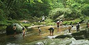 自然に慣れ親しむ川遊びは「こども環境会議」活動の一環。