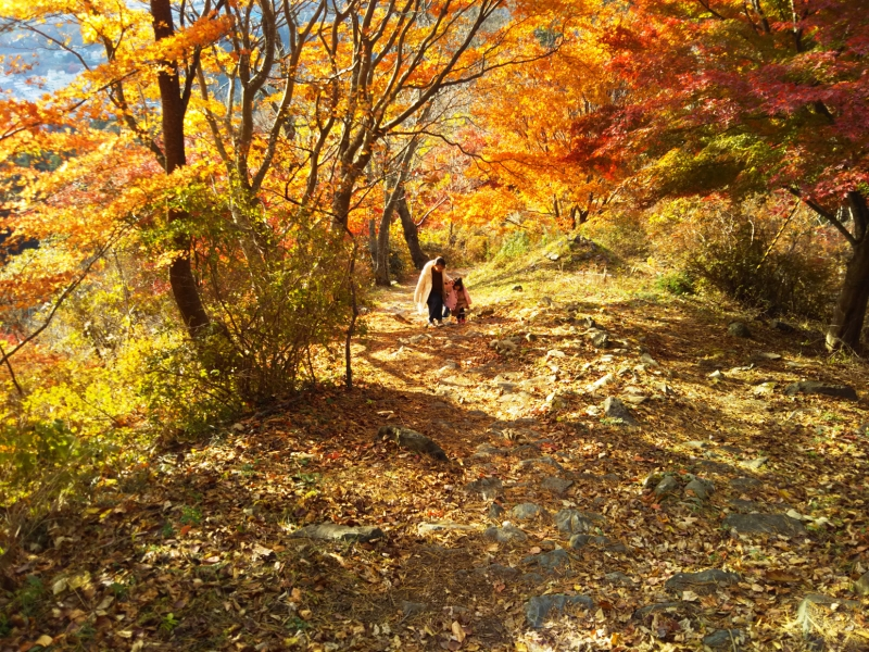 安波山は紅葉がちょうど見ごろを迎えていました。山頂への道は紅葉が美しく、朝の澄んだ空気とで、とても気持ちが良かったです。