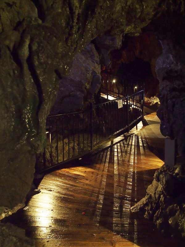 洞内の通路は、木やコンクリートで綺麗に舗装されている