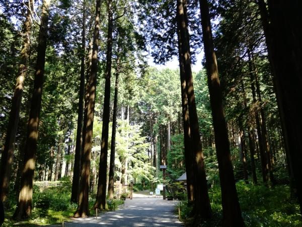 地域の歴史を知る休日(秩父宮記念公園)