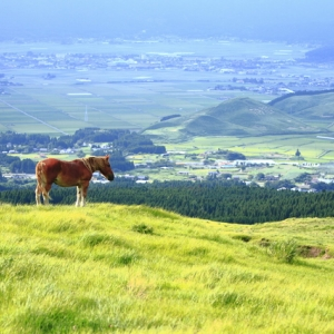 【復興支援ツアー2017】熊本地震から1年半 熊本、大分の今を知る旅 by akaheru