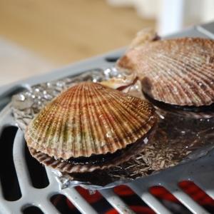 赤皿貝という名の極上の美味