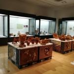 地域の歴史を知る休日(長泉文化財展示館)