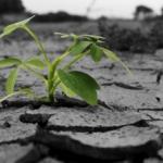 【復興支援ツアー2017】地震・津波・原発事故 … 東日本大震災から防災を学ぶ旅 by cha_chan