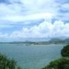 沖縄・辺野古 大浦湾の保全 - オフィシャルPro|NACS-J