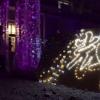 2017-03-11 高田に輝の花を咲かせよう - YouTube