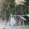 400年前、道慶さんが目にしたもの