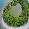 大瀬崎の神池 見る・遊ぶ 沼津市公式観光サイト【沼津観光ポータル】