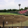 【260】【7月17日】今日の試合結果 ~第99回全国高等学校野球選手権静岡大会
