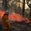 Australia fires: NSW Blue Mountains fires 'could merge' - BBC News