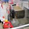 【解説】汚染雨水がまた海へ。漏洩は恒常化か?