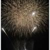 今年の鳴瀬流灯花火大会は8月16日に開催