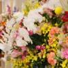 【さあ、これから】アバッセは花の香りにあふれて
