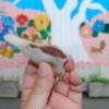 1個60円の和菓子「 ちゃきん 」。食べに行こう! 石巻へ
